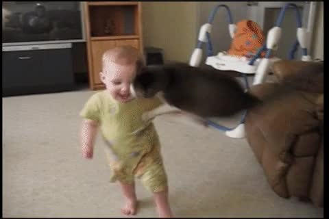 revenge for all those bros suffered from kids in other gifs gif