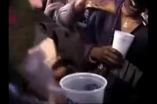 public tits flash at mardi gras gif